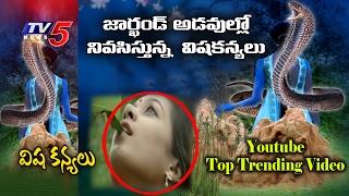 Unbelievable Poison Girls (విష కన్యలు) Still Exist !   Visha Kanya - Unbelievable Stories   TV5 News