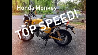 4. Honda Monkey Top Speed and Review