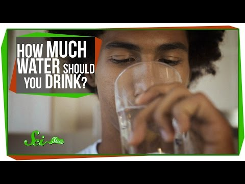 """I - People ask Google everything under the sun. One of the most commonly searched questions in the world is """"How much water should I drink a day?"""" SciShow has the answer! Watch more of the..."""