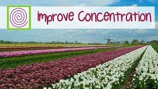 Music to improve concentration and focus in the workspace. Improve learning and meditation