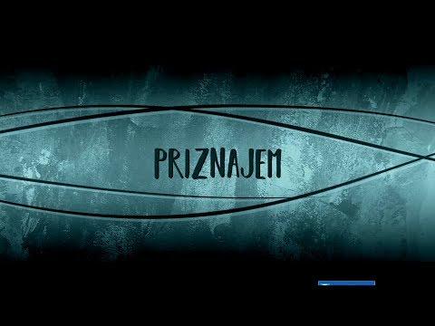Aleksa Perovic - Priznajem