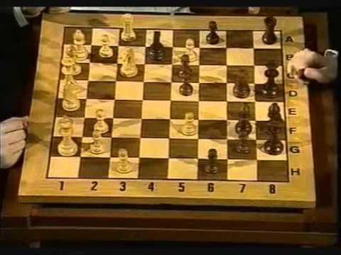 Kasparov karpov Lyon 1990 subtitulos Español (3)