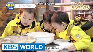 Video The Return of Superman - The Triplets Special Ep.12 [ENG/CHN/2017.07.28] MP3, 3GP, MP4, WEBM, AVI, FLV Februari 2019