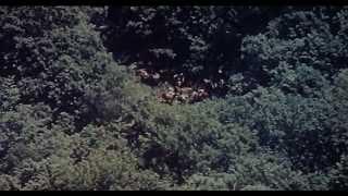 DERSU UZALA: El cazador - V.O.S.