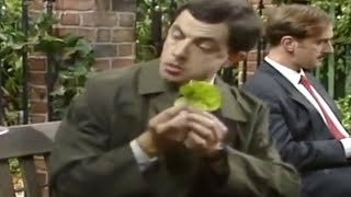 MrBean - Mr Bean - Washing salad the Bean way