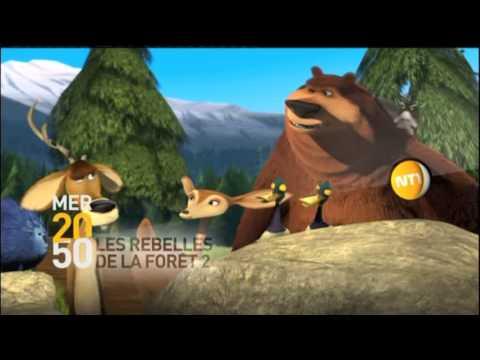 Les Rebelles de la For�t GameCube