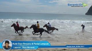 Keseruan Pacuan Kuda Gayo di Pantai Lampuuk