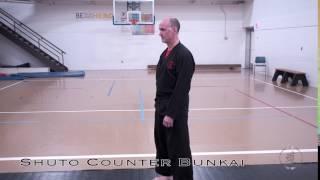 Shuto Counter Bunkai