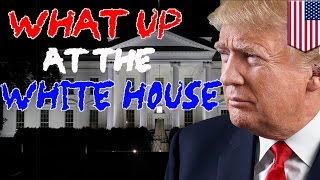 WASHINGTON — Trump kicks the week off doing what he does best, popping up unexpectedly when he crashes a wedding at his Jersey golf club amid chants of 'USA, USA, USA!'  He gets some new houseguests after Melania and Barron finally move into the White House.   White House Deputy Press Secretary Sarah Huckabee Sanders has a bit of a covfefe moment.  And what would an episode be without some Twitter. Trump gets angry at Stephen King and blocks him, but then J.K. Rowling steps up to the plate to help King get his daily fix.  Trump calls on the mayor of Tangier Island in Chesapeake Bay to tell him that he shouldn't worry about rising sea levels and that his island will be around for hundreds of years.  And then things get real weird at Trump's Cabinet meeting, like Dear Leader weird.   Donald winds down and has the Americanest birthday celebration ever.  Oh yeah, he's also getting investigated for obstruction and Pence has lawyered up. Stay tuned for this week's show.-------------------------------------------------------------Go to https://www.patreon.com/tomonews and become a Patron now TomoNews is now on Patreon and we've got some cool perks for our hardcore fans.TomoNews is your best source for real news. We cover the funniest, craziest and most talked-about stories on the internet. Our tone is irreverent and unapologetic. If you're laughing, we're laughing. If you're outraged, we're outraged. We tell it like it is. And because we can animate stories, TomoNews brings you news like you've never seen before.Visit our official website for all the latest, uncensored videos: http://us.tomonews.comCheck out our Android app: http://bit.ly/1rddhCjCheck out our iOS app: http://bit.ly/1gO3z1fGet top stories delivered to your inbox everyday: http://bit.ly/tomo-newsletterSee a story that should be animated? Tell us about it! Suggest a story here: http://bit.ly/suggest-tomonewsStay connected with us here:Facebook http://www.facebook.com/TomoNewsUSTwitter @tomonewsus http://www.t