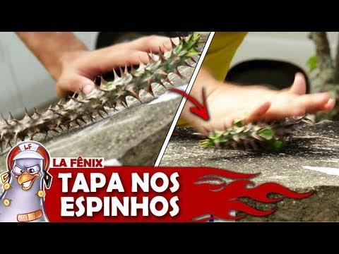 DESAFIO DO TAPA SURPRESA COM ESPINHOS