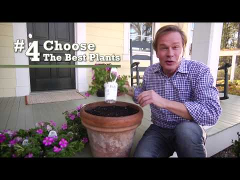 5 Tips for Container Gardening –  Proven Winners®