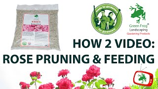 Uploaded...A New How To Video For Rose Feed