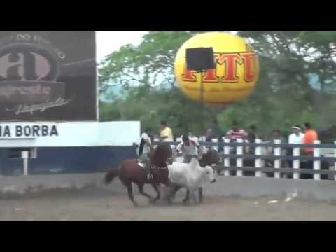 Arcanjo Toro - Pq Rufina Borba 2016
