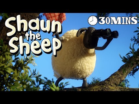 Shaun the Sheep - Season 3 - Episodes 11-15 [30 MINS] (видео)