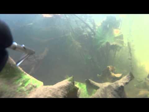рыбалка на буревестнике