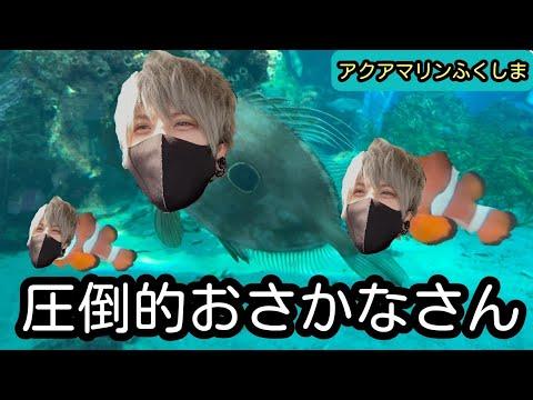 【アクアマリンふくしま】レン水族館に行く!の巻【絶景】 видео