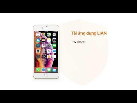 0 Chính thức ra mắt bảo hiểm tự động LIAN hoàn toàn do người Việt lập trình