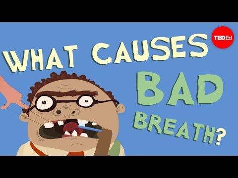 What causes bad breath? – Mel Rosenberg