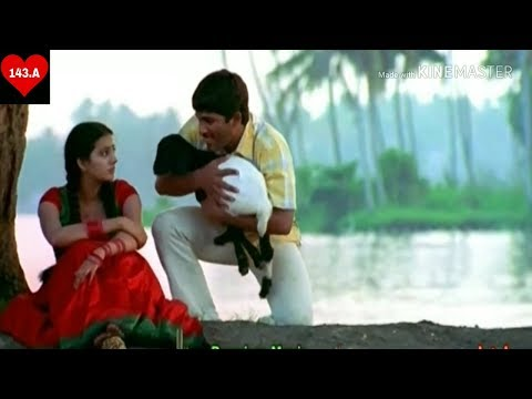 Video Ye dil kisi ki mane na whatsapp status download in MP3, 3GP, MP4, WEBM, AVI, FLV January 2017