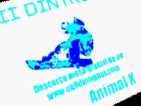 Animal X feat J. Yolo - Unii dintre noi Raneni style (видео)