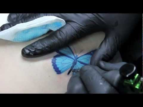 Butterfly Tattoo Dedicated to Kate Lopez – Living Art Gallery Tattoo Lounge – Monte Livingston