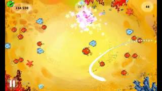 Fish Circle YouTube video