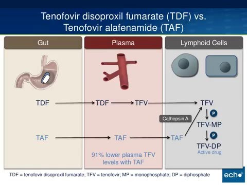 Tenofovir Alafenamide (TAF)