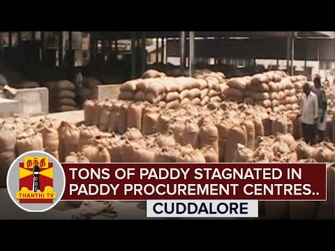 Tons-of-Paddy-stagnated-in-Cuddalore-Procurement-Centres-Thanthi-TV