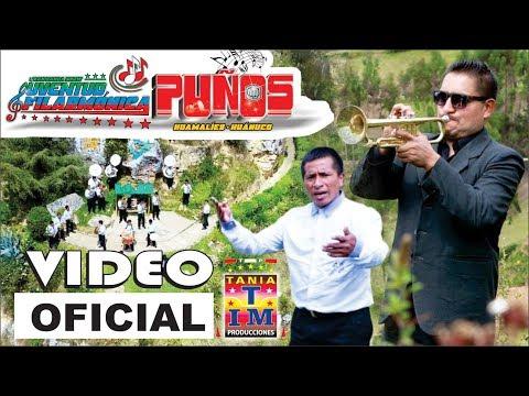 Videos de amor - Banda Juventud Filarmonica Puños - Asesina de Amor (Video Oficial) Primicia 2019 Tania Producciones