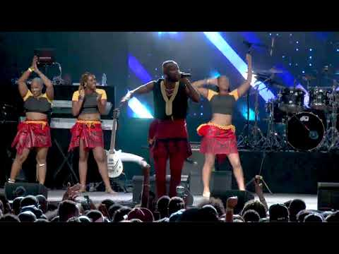 Eddy kenzo's Full Performance At The Interswitch One Africa Music Fest New York 2019