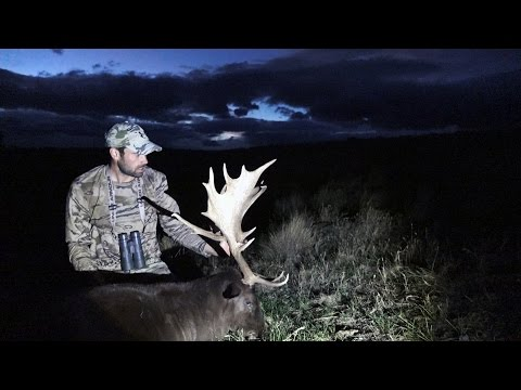 S:6 E:10 Fallow Deer Hunt in New Zealand with Remi Warren of SOLO HNTR
