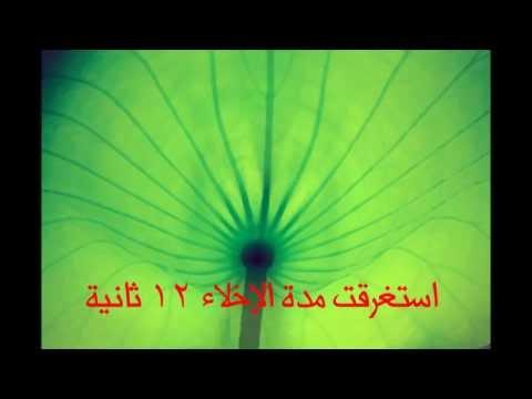 برنامج الإخلاء في ابتدائية القحف والشوله 1435-1436هـ