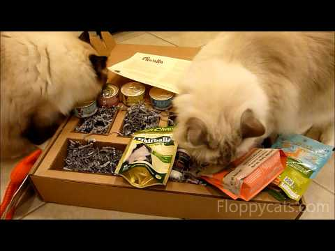 0 Pawalla Cat Gift Box Review