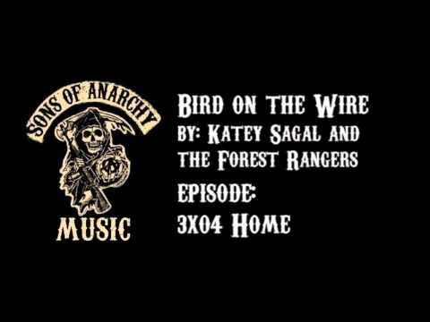 Tekst piosenki Katey Sagal and The Forest Rangers - Bird On A Wire po polsku