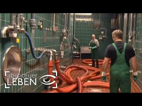 Wie funktioniert die Beck's Brauerei? (1/2) | Abenteuer ...