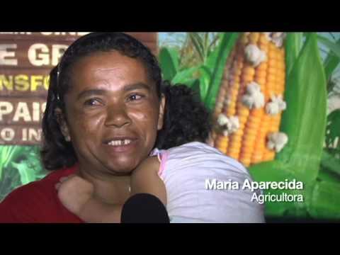 Pernambuco | 2010 - 5ª Edição