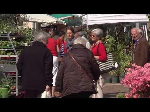 Algunder Garten- und Pflanzenmarkt