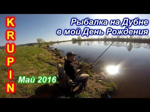 рыбалка в подмосковье видео на дубне