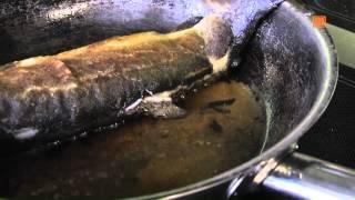 Forelle Müllerin Art mit Schwenkkartoffeln