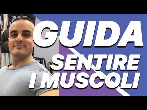 Aumentare Massa Muscolare: la Guida Completa per Sentire i Muscoli