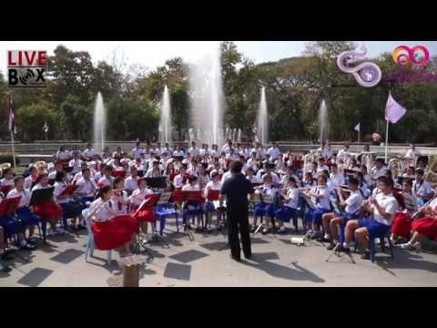 การแสดง School Orchestra