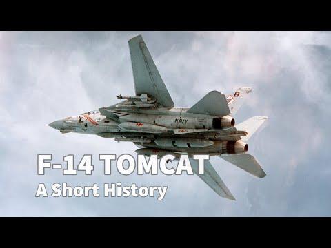 The Grumman F-14 Tomcat was a US...