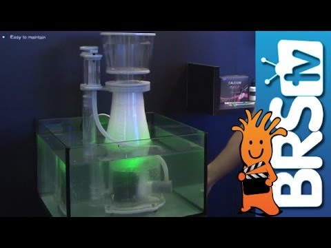 NYOS Adds Color LED's to Skimmers | Interzoo 2014