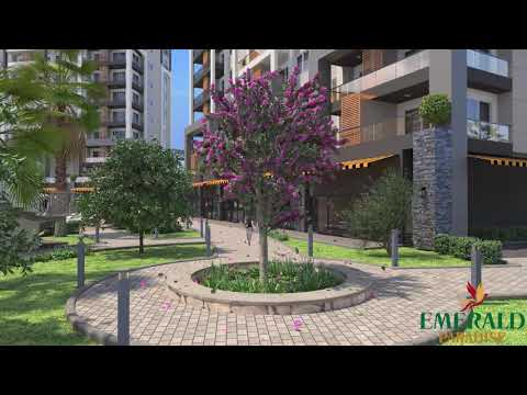 THE PROJECT EMARLD  PARADISE