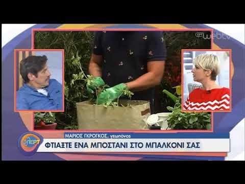Πώς να φτιάξετε μποστάνι στο μπαλκόνι σας! | 22/06/2020 | ΕΡΤ
