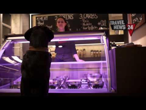 ristorante per cani e gatti a berlino