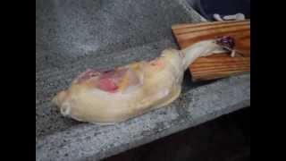 Rodrigo matando Galinha caipira no porão, carne duraaa