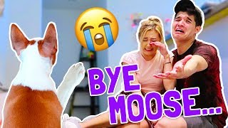 GET YOUR WASSABI MERCH NOW!http://www.AlexWassabi.comMoose is the best son anyone could ever asked for. Saying goodbye is the hardest thing we've had to do as parents but it's for the best. See you in two weeks Moosie! 😭😭😭Wassabi's MUST WATCH videos!: http://bit.ly/29yPBEHWatch every Wassabi CHALLENGE video!: http://bit.ly/29wKUeBNew Wassabi episode EVERY DAY!JOIN THE JOURNEY!Twitter: http://bit.ly/29A6ZIZInstagram: http://bit.ly/29NFnWrSecond Channel: http://bit.ly/2cU60JvFacebook: http://bit.ly/29LVthySnapchat: @RealAlexWassabiDon't forget to remember!If you're not smiling,YOU'RE DOING IT WRONG!! :)mKay bYe!