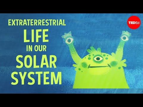 There May be Extraterrestrial Life in Our Solar