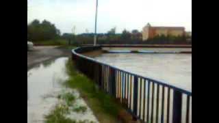 Samsun Termede Sel